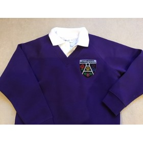 Lochnorris  Primary School V Neck Sweatshirt
