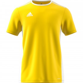 Adidas Entrada 18 Yellow Kids T-shirt